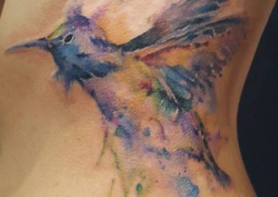 Watercolour hummingbird