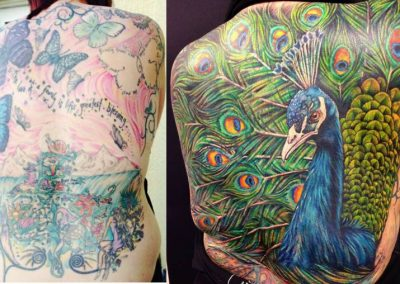 Full back, coverup